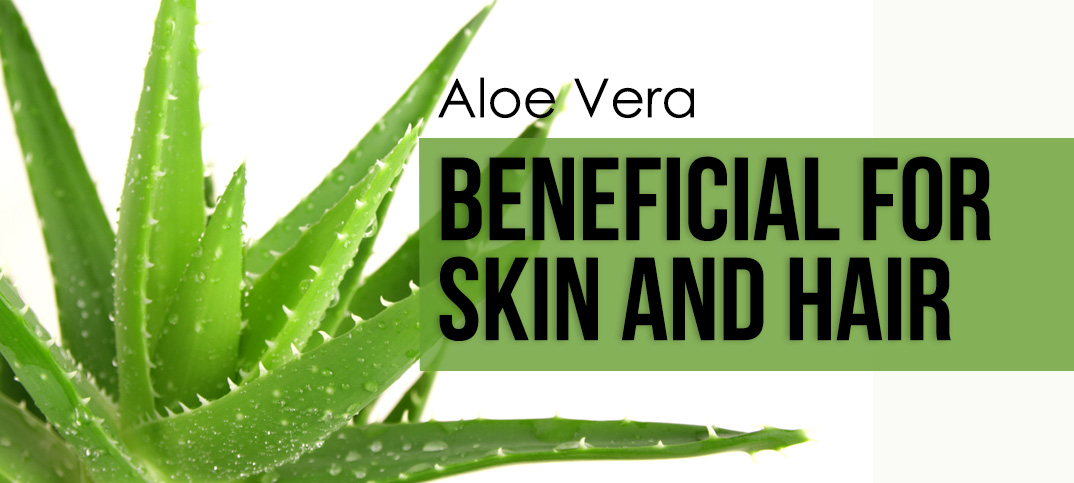aloe vera benefits for skin and hair