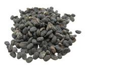 babchi seeds benefits for skin