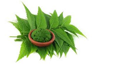neem benefits for skin