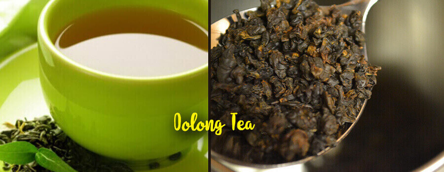 oolong tea weight loss