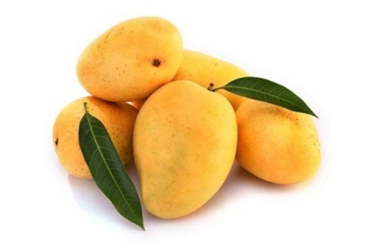 aloe vera mango pulp