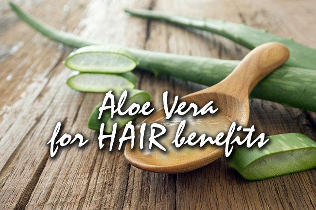 aloe vera for hair benefits