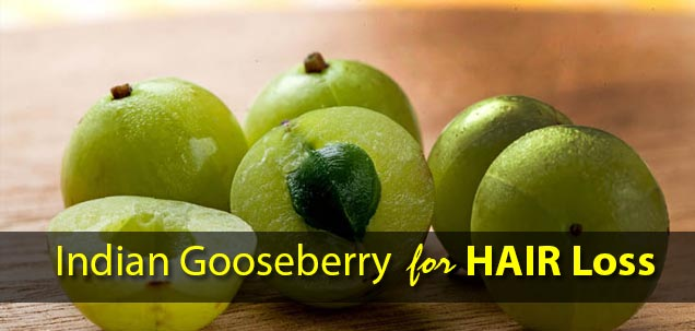indian gooseberry for hair loss